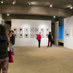 Closing Reception: Animal Dignity and an Ethics of Sight